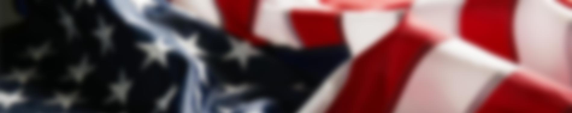 Salute to Veterans Page Banner